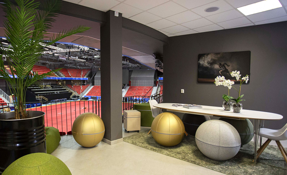 A.M. Acoustics sound absorbers at the sporting arena